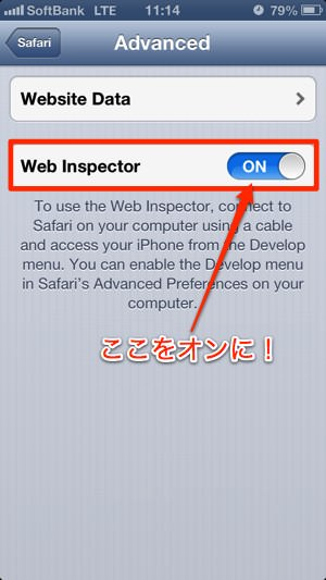 safariwebinspector_safari_2.jpg