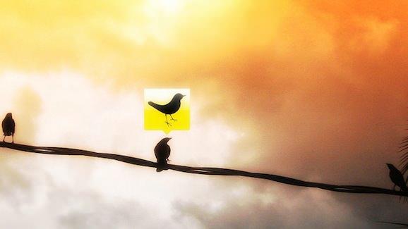 Tweetdeck bird