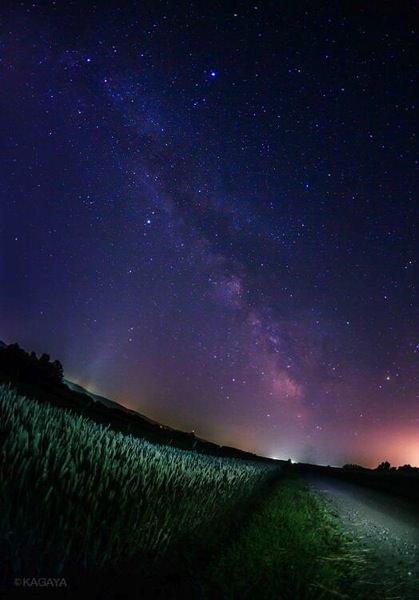 北海道の麦畑にて七夕の天の川を撮影した美しすぎる写真