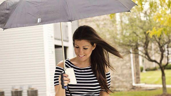 傘「Brolly」