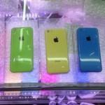 budget-iphone-back-1.jpeg