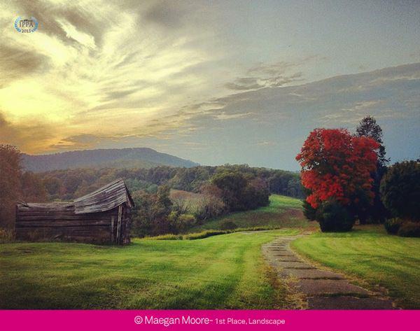 2013 iPhone Photography Awards Maegan Moore