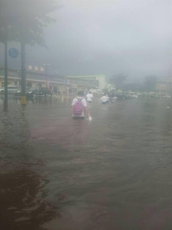 Akita rain