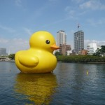 rubber-duck.jpg