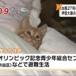 scared-of-the-typhoon.jpg