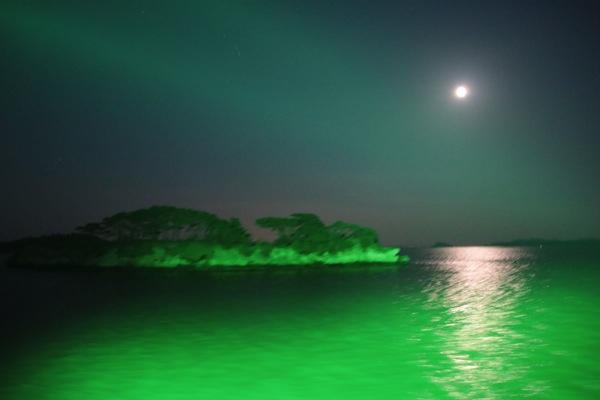 matsushima-cruising-27.jpg