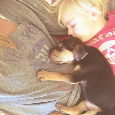 toddler-sleeping-with-dog-1.jpg