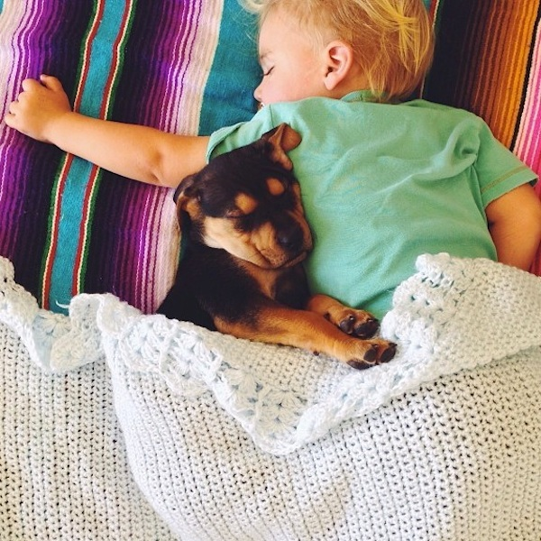 toddler-sleeping-with-dog-11.jpg