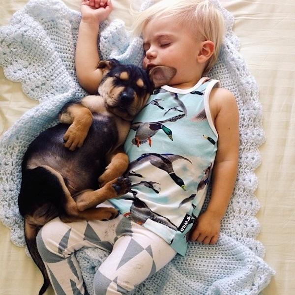 toddler-sleeping-with-dog-12.jpg