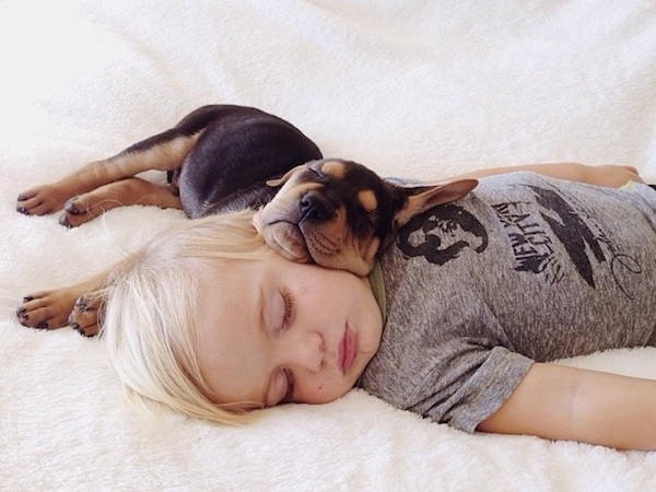 toddler-sleeping-with-dog-13.jpg