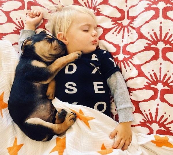 toddler-sleeping-with-dog-14.jpg