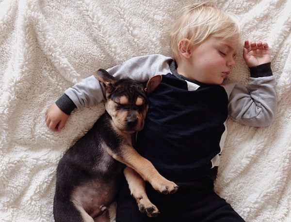toddler-sleeping-with-dog-15.jpg