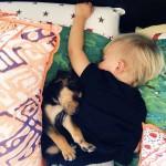 toddler-sleeping-with-dog-3.jpg