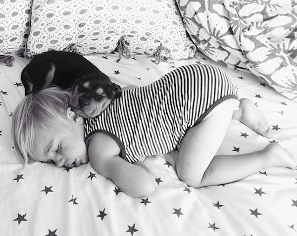 Toddler sleeping with dog