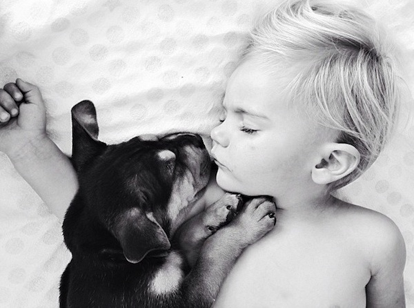 toddler-sleeping-with-dog-8.jpg