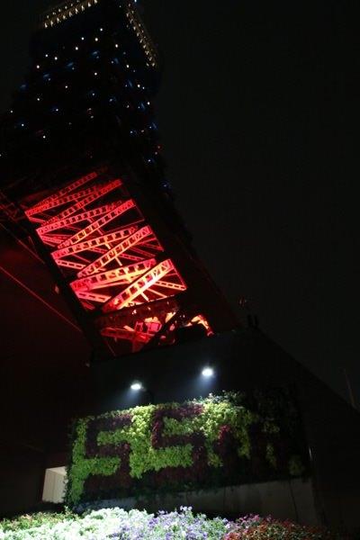 tokyo-towter-illumination-11.JPG