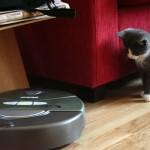 roomba-and-cat.jpg