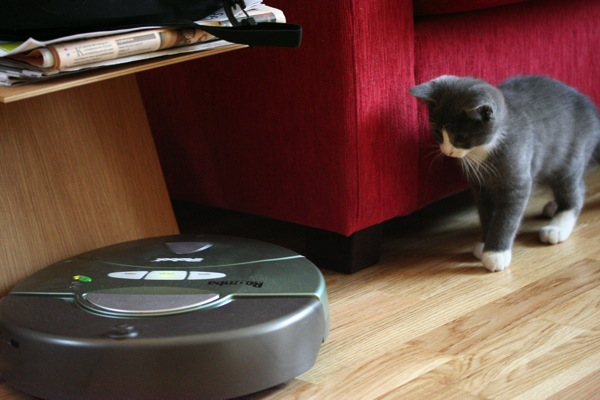 roomba-and-cat.jpg
