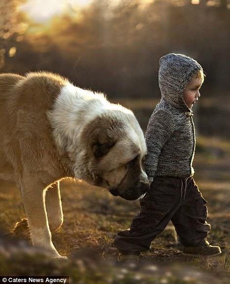 動物と人間の壁を超えた「本物の友情」