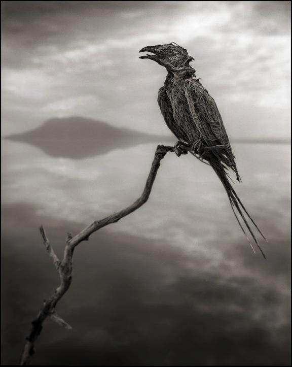 ナトロン湖(タンザニア)