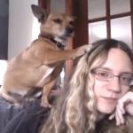 petting-dog.png