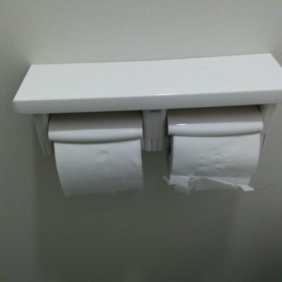toilet-paper-4.jpg