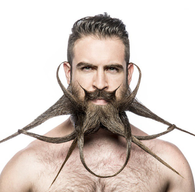 Mr. Incredibeard's Amazing Beard