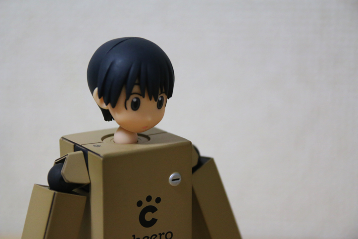cheero-danboard-model-16.jpg