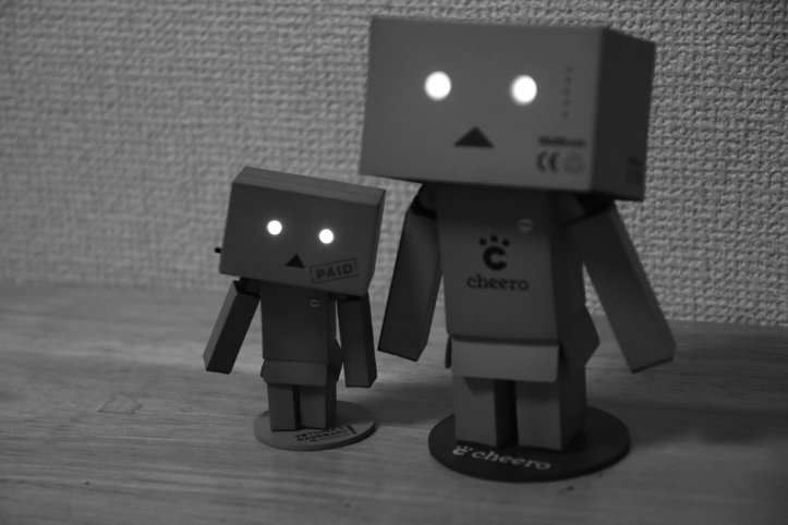 cheero-danboard-model-18.jpg