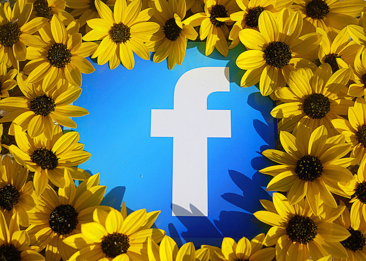 Facebook Logo with Sunflowers