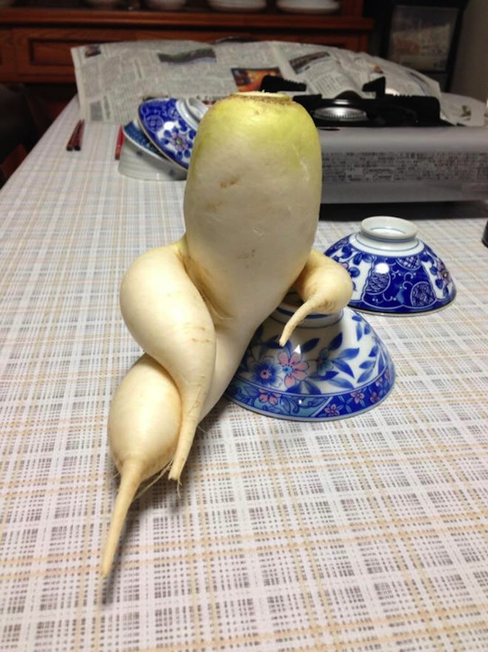 funny-vegetables-2.jpg