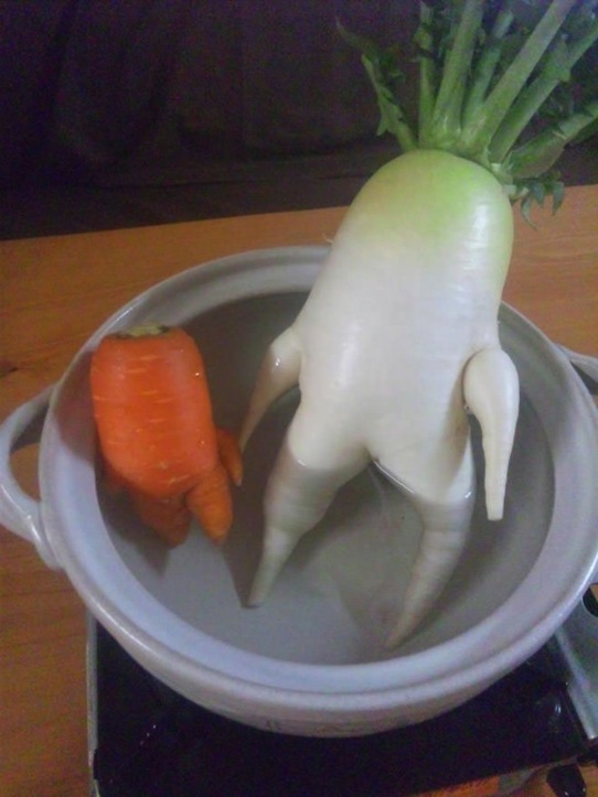 funny-vegetables-3.jpg