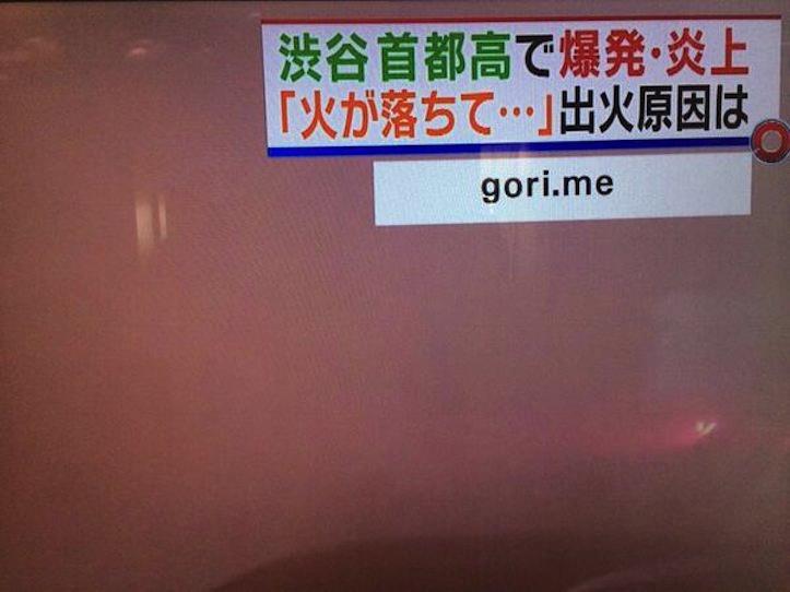 とくダネ!でgori.meが情報提供