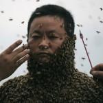 She-Ping-Bees.jpg