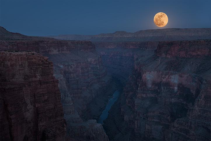 honey-moon.jpg