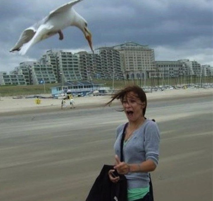 People who should stay away from the beach