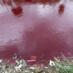 red-river-4.jpg