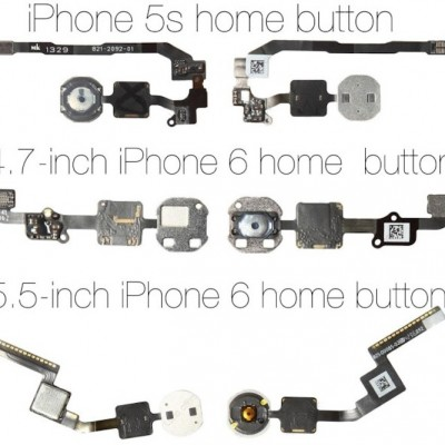 iPhone6homebuttons-640x590.jpg
