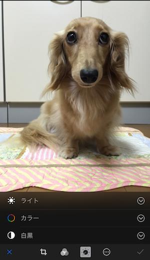 Photo editing on iOS 8