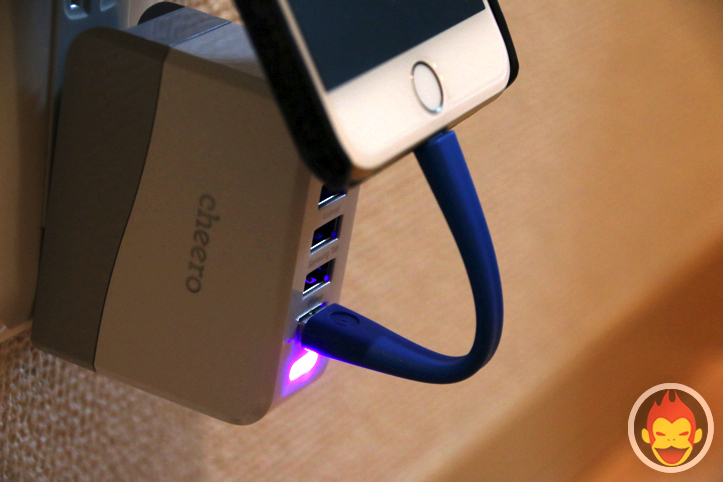 Mophie lightning cable(0.1m)
