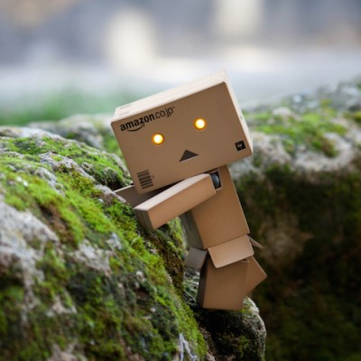 amazon-danbo.jpg