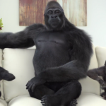 corning-gorilla-glass-4.png