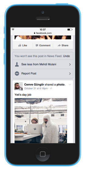 News feed controls