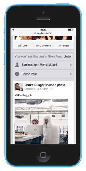 News feed controls
