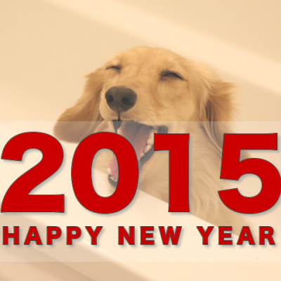 happy-new-year-2015.png