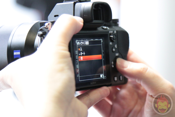 Sony-Alpha-2-12.jpg
