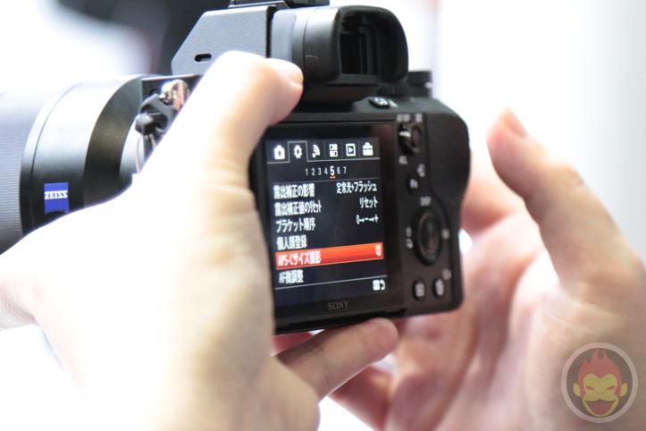 Sony-Alpha-2-13.jpg