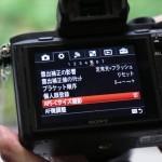 Sony-Alpha-2-15.jpg