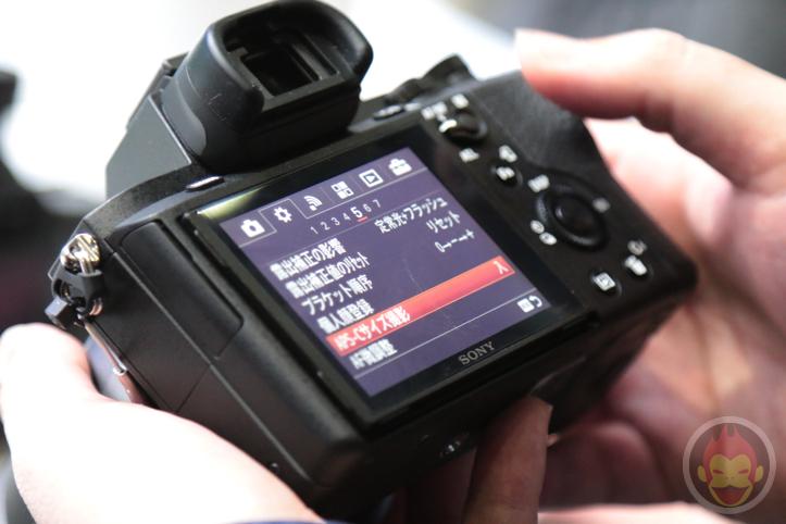 Sony-Alpha-2-7.jpg