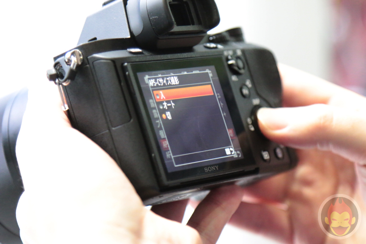 Sony-Alpha-2-8.jpg